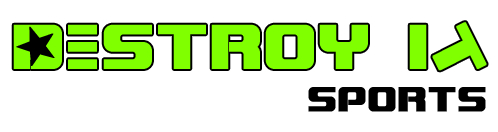 Destroy It Sports Logo